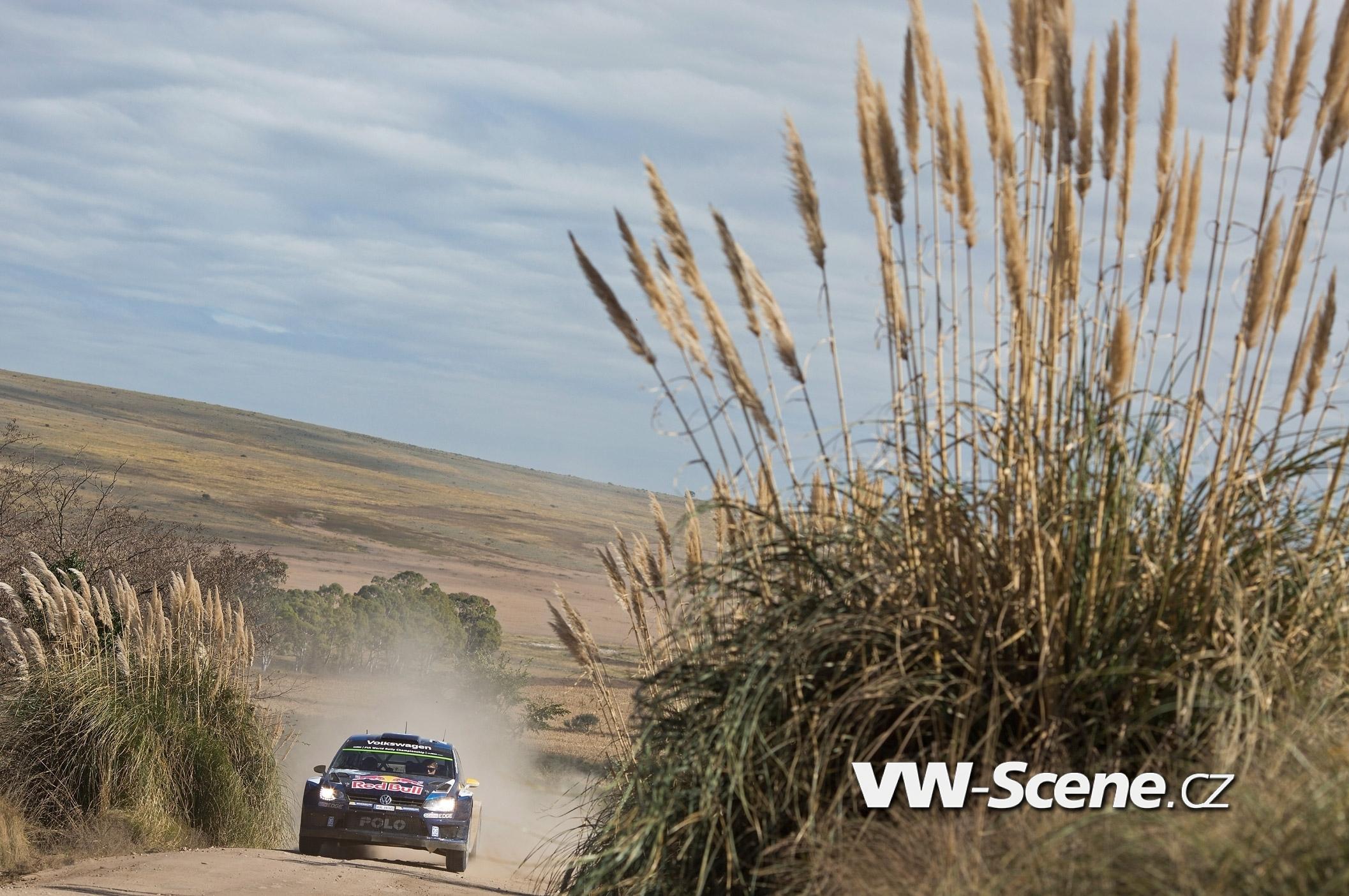 Polo R WRC 38