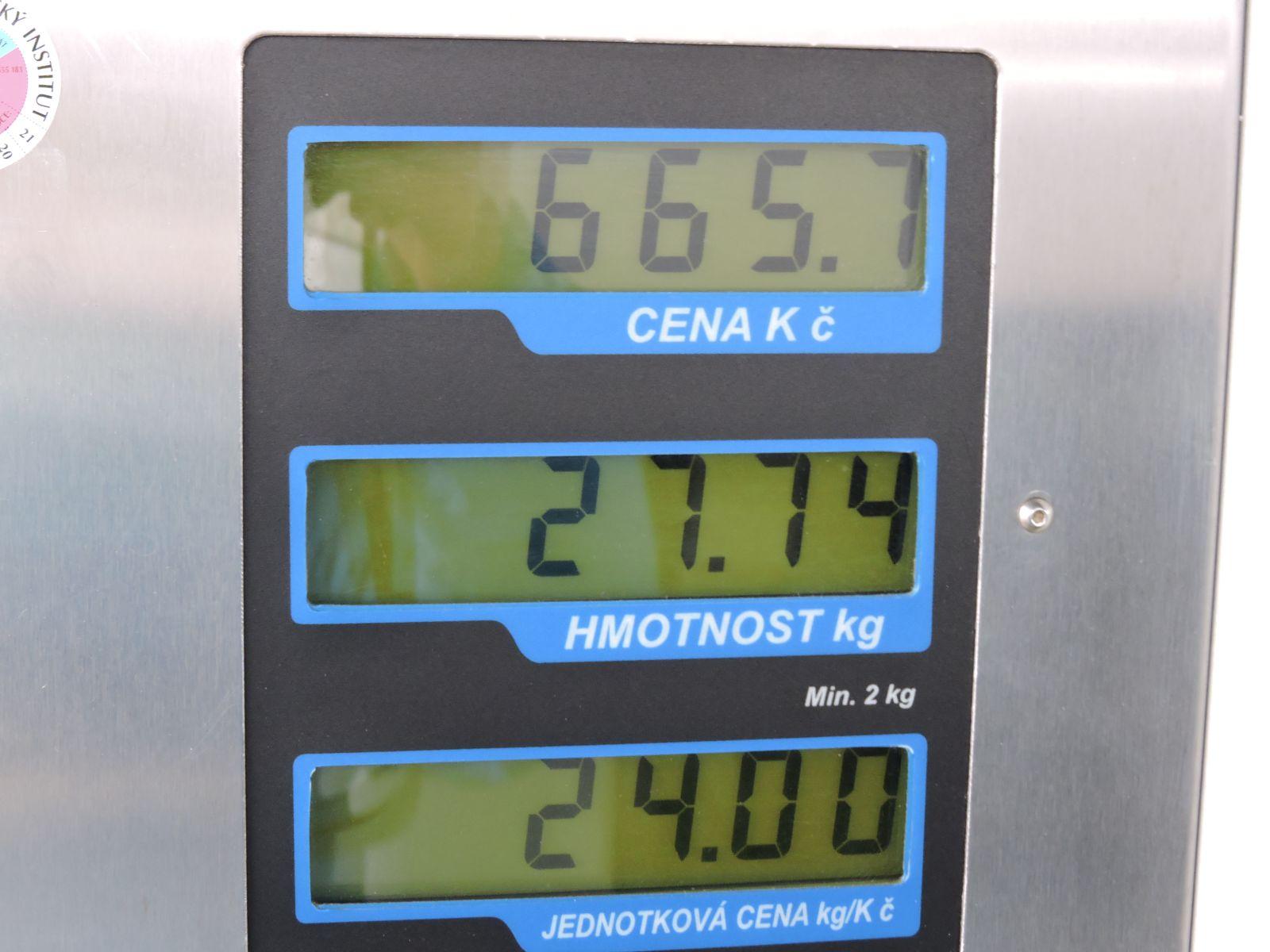VW-CADDY-CNG-03